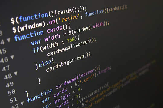 Desenvolvedor Javascript